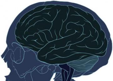 Maladie d'Alzheimer, pertes de mémoire ou démence?